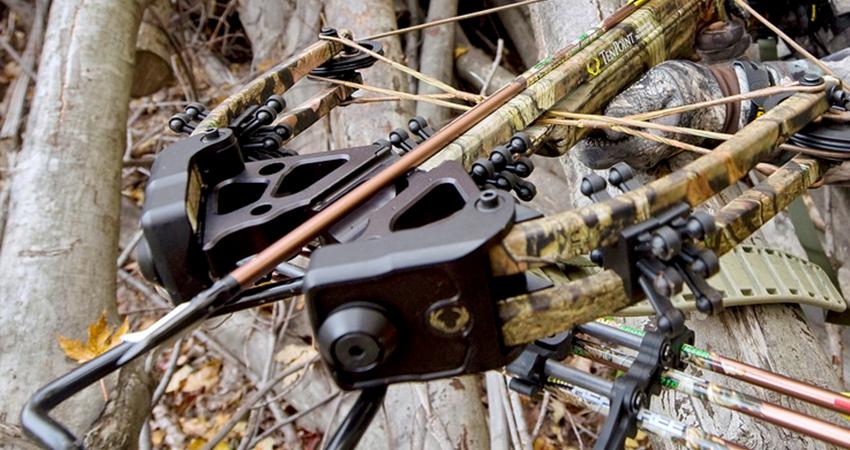 best crossbow for beginner