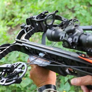 crossbow vs recurve bow