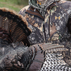 Where to shoot a turkey with a crossbow