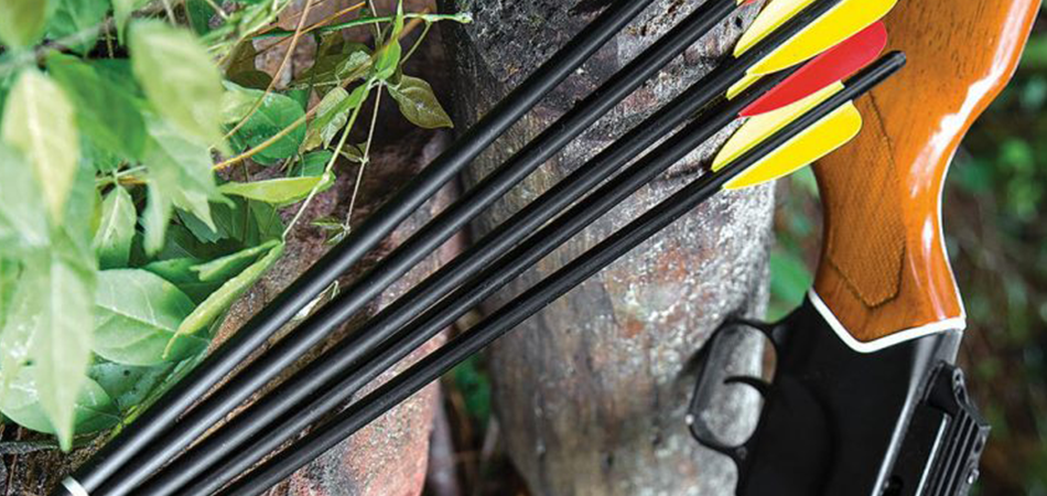 The 5 Best Crossbow Bolts for Deer Hunting Reviews In 2021
