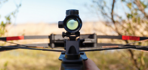 8 Best Crossbow for Home Defense Reviews (Top of the Year)