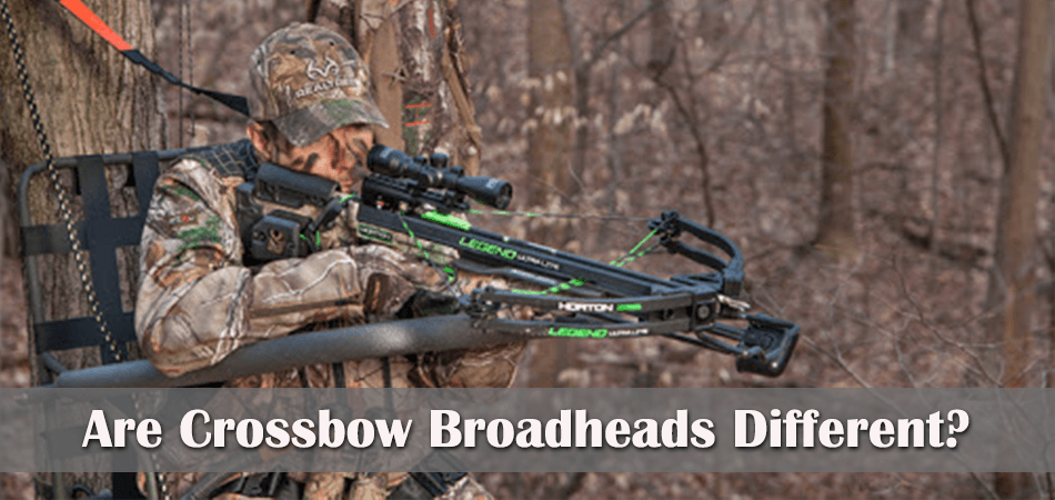 Are Crossbow Broadheads Different Than The Regular Broadheads?